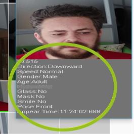 Immagine telecamere con AI con analisi demografica per caratteristiche fisiche, riconoscimento genere ed età