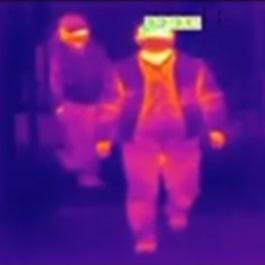 Misurazione della temperatura corporea dal video - termoscanner